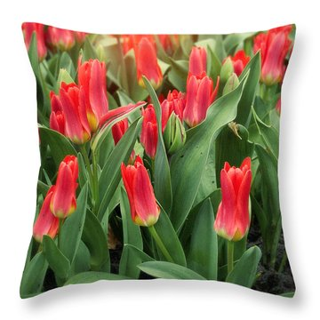 The Army Throw Pillow