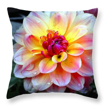Throw Pillow featuring the photograph The Arrival by Allen Beilschmidt