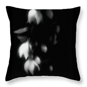 The Art Of Seduction Throw Pillow