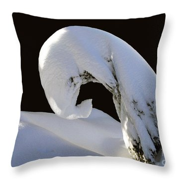 The Art Of The Bow Throw Pillow