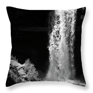 The Artifice Of Control Throw Pillow