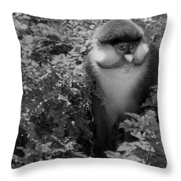 The Artisan Throw Pillow