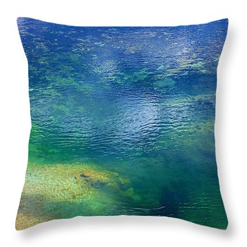 Throw Pillow featuring the photograph The Artist Pallet by Robert Pearson