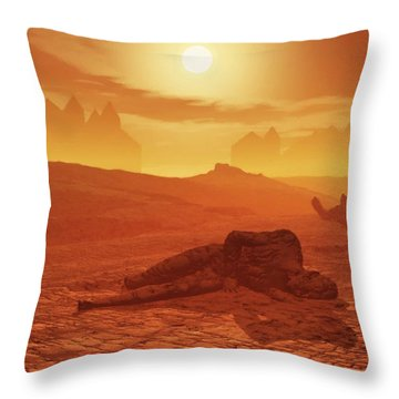 The Ash Vessels Throw Pillow