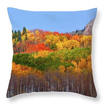 The Autumn Blanket Throw Pillow by John De Bord
