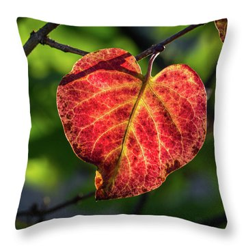 Throw Pillow featuring the photograph The Autumn Heart by Bill Pevlor
