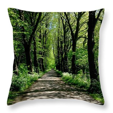 The Avenue Of Limes At Mill Park 3 Throw Pillow