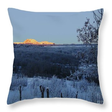The Babines In Winter Throw Pillow