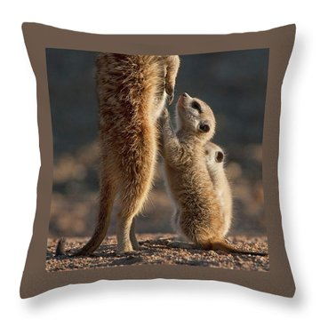 The Baby Is Hungry Throw Pillow