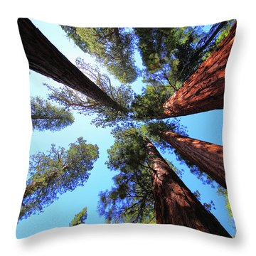 Yosemite California Throw Pillows