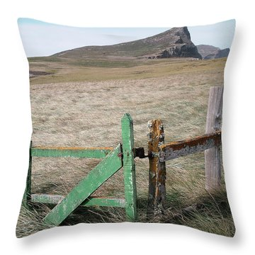 The Back 1000 Throw Pillow