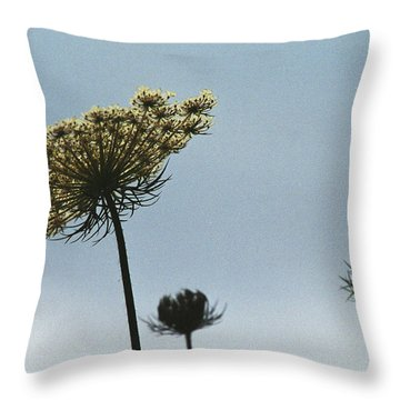 Throw Pillow featuring the photograph The Back Story by Wanda Brandon