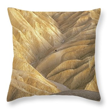 The Badlands Throw Pillow