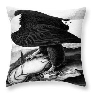 The Bald Eagle Throw Pillow