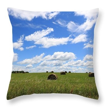 The Bales Of Summer 3 Throw Pillow