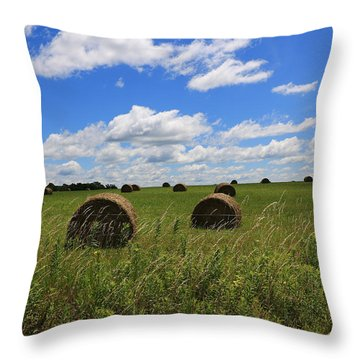 The Bales Of Summer Throw Pillow