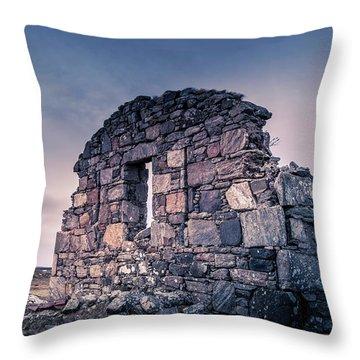 The Barn Throw Pillow