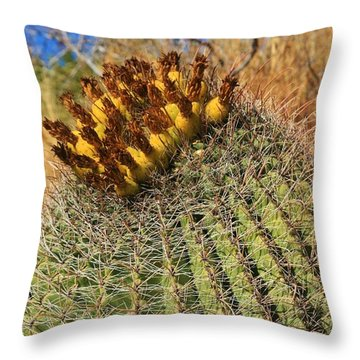 The Barrel Throw Pillow by Sheila Ping