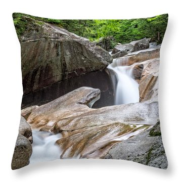 Throw Pillow featuring the photograph The Basin Down River by Michael Hubley
