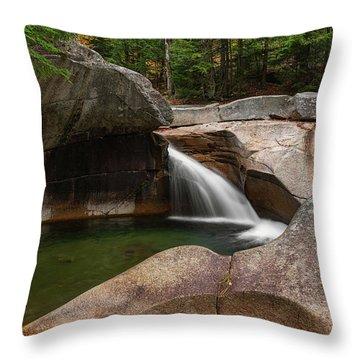 The Basin Throw Pillow
