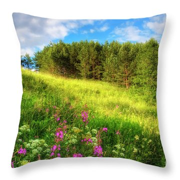 The Beach Meadow Throw Pillow