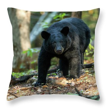 Throw Pillow featuring the photograph The Bear by Everet Regal