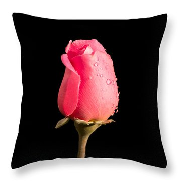 The Beauty Of A Rose Throw Pillow