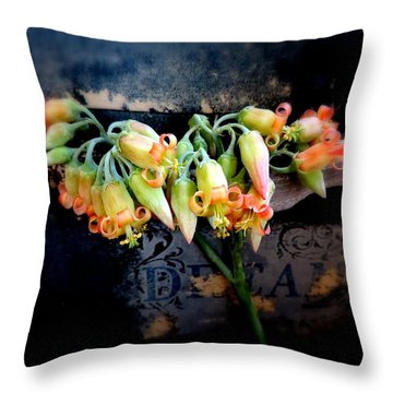 The Beauty Of A Succulent Throw Pillow