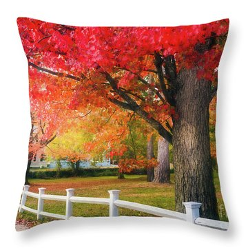 The Beauty Of Autumn In New England Throw Pillow