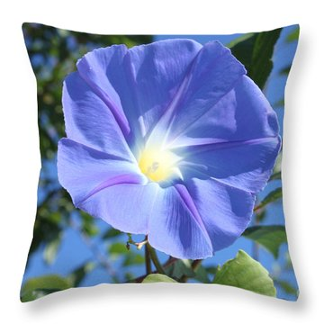 The Beauty Of Blue  Throw Pillow