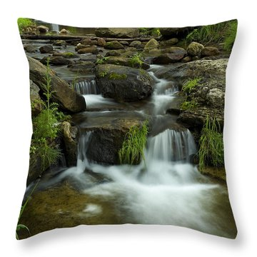 The Beauty Of Nature Throw Pillow by Sue Cullumber