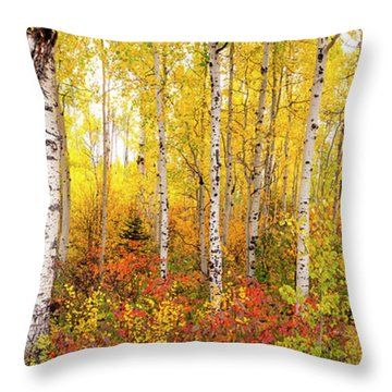 The Beauty Of The Autumn Forest Throw Pillow