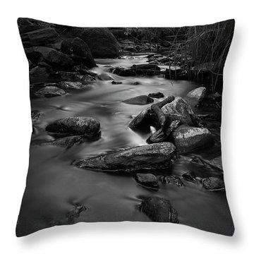 The Beck Throw Pillow