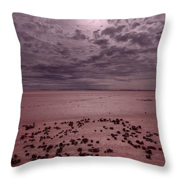 Throw Pillow featuring the photograph The Beginning I V by Julian Cook