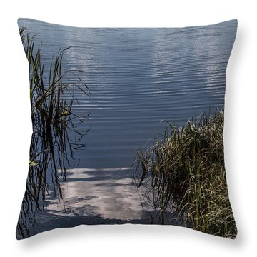 Throw Pillow featuring the photograph The Beginning by Odd Jeppesen