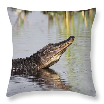 The Bellow  Throw Pillow by Kathy Gibbons