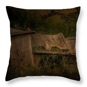Throw Pillow featuring the photograph The Bench by Ryan Photography