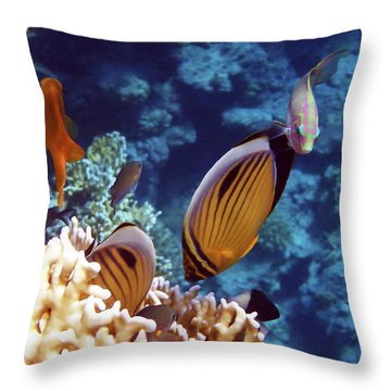 The Best Of The Red Sea Throw Pillow