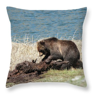 The Best Part Throw Pillow