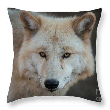 The Big Beautiful Wolf Throw Pillow