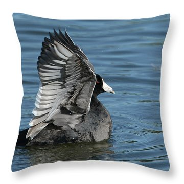 Throw Pillow featuring the photograph The Big Flap by Fraida Gutovich