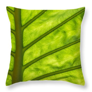 The Big Leaf Throw Pillow