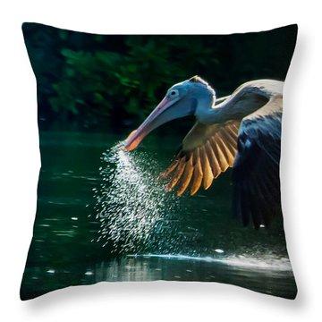 The Big Scoop Throw Pillow