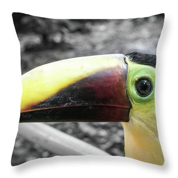 The Big Toucan Throw Pillow