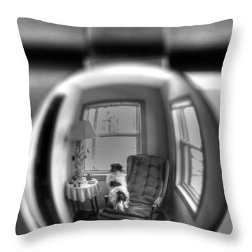 The Black And White Globe Dog Throw Pillow