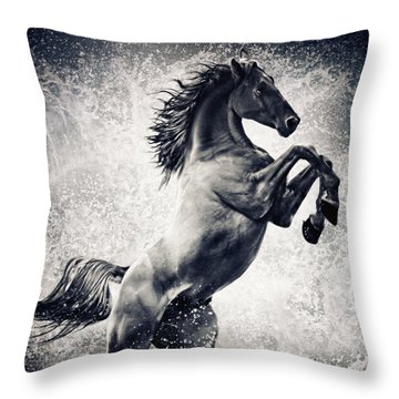 The Black Stallion Arabian Horse Reared Up Throw Pillow