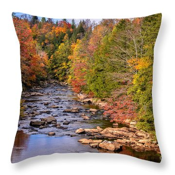 The Blackwater River In Autumn Color Throw Pillow