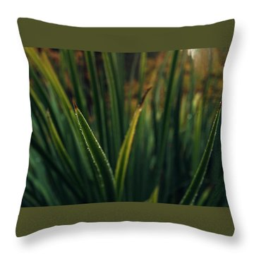 The Blade II Throw Pillow