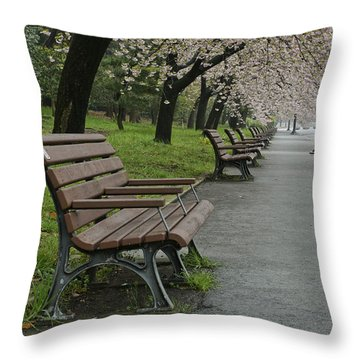The Blossoms And The Bench Throw Pillow