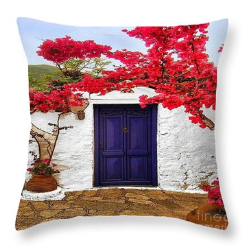 The Blue Door Throw Pillow
